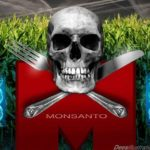 Monsanto Corn Table Food